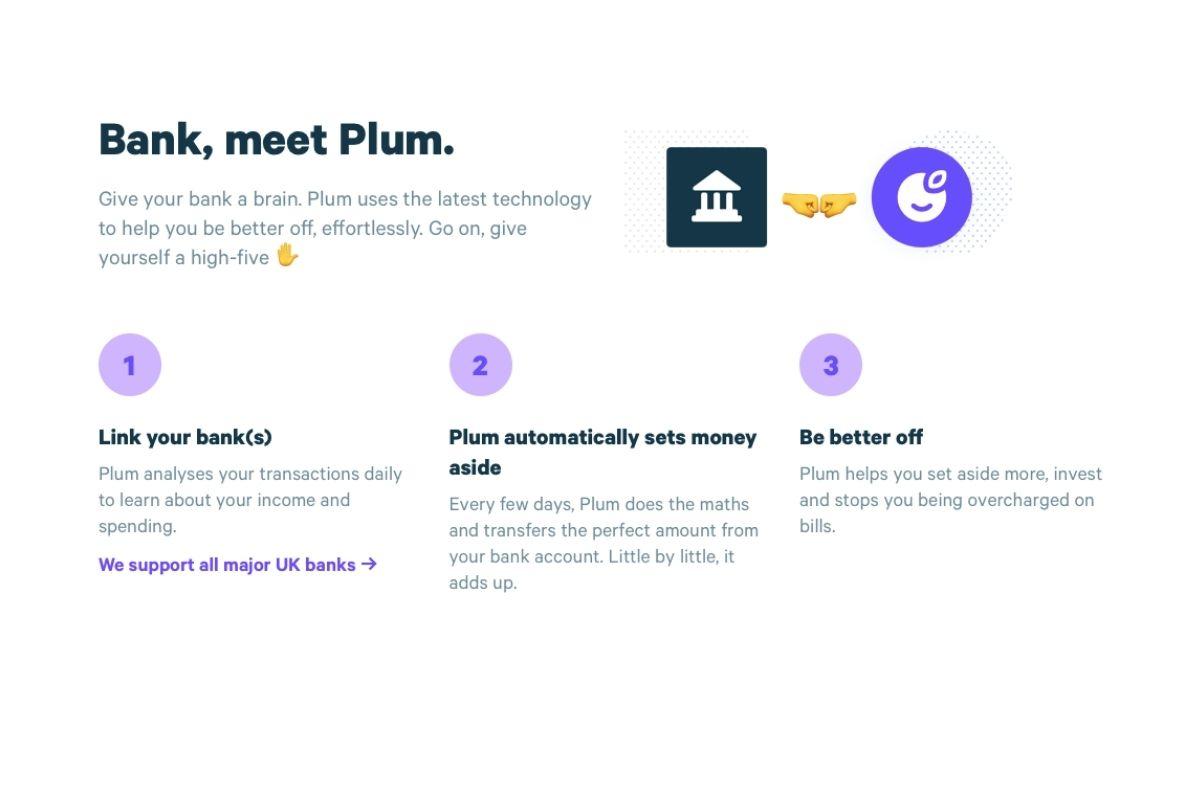 Plum website - showshow Plum works
