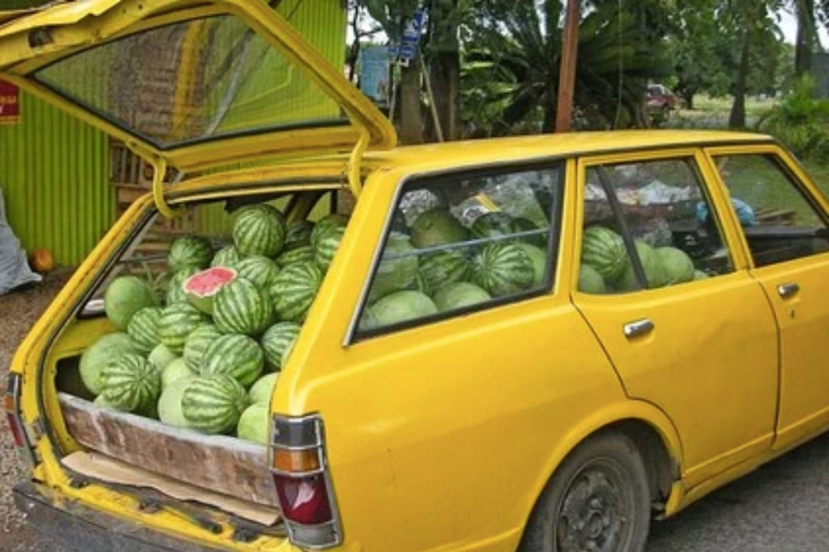 Yellow car with watermelons in the boot