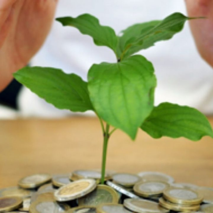 What Can Startups Do To Save Money?